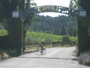 Corey Coppola Winery pre-crash